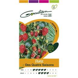 FRAISE DES 4 SAISONS S3