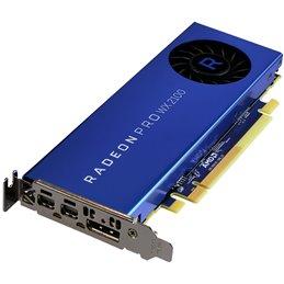 CV AMD Radeon Pro WX2100 2GB 2xmDP/1xDP Retail